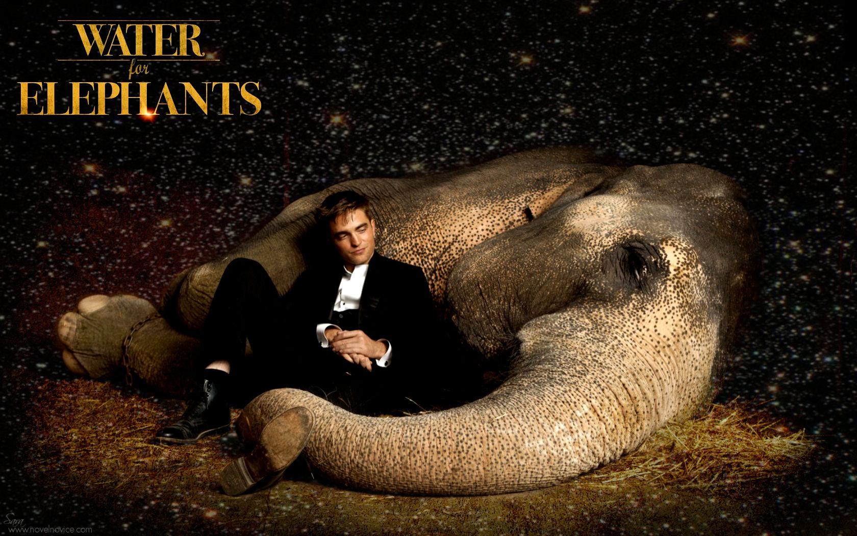 Water for Elephants – Exclusive New Desktop Wallpapers | Novel Novice