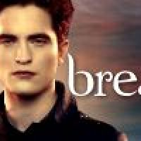 The Twilight Saga: Breaking Dawn: Part 2: What do you read (and watch) now?