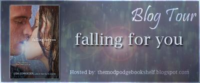 FFY blog tour banner