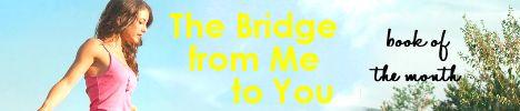 Bridge_botm_banner