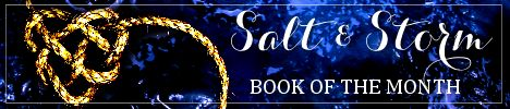 salt and storm botm banner