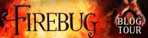 Firebug BlogTour