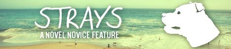 Strays Feature Banner
